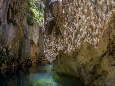 Mares Forest Creek track, Wombeyan Karst Conservation Reserve